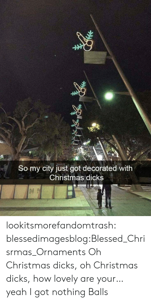blessed: So my city just got decorated with  Christmas dicks lookitsmorefandomtrash:  blessedimagesblog:Blessed_Chrisrmas_Ornaments Oh Christmas dicks, oh Christmas dicks, how lovely are your… yeah I got nothing  Balls