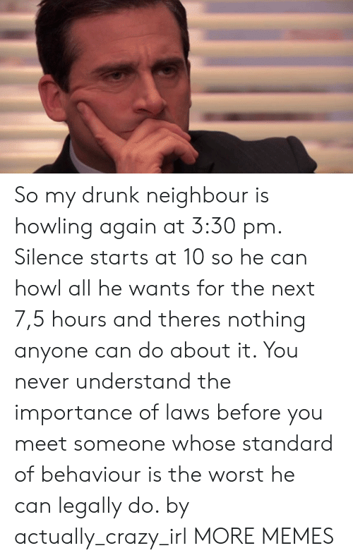 Crazy, Dank, and Drunk: So my drunk neighbour is howling again at 3:30 pm. Silence starts at 10 so he can howl all he wants for the next 7,5 hours and theres nothing anyone can do about it. You never understand the importance of laws before you meet someone whose standard of behaviour is the worst he can legally do. by actually_crazy_irl MORE MEMES