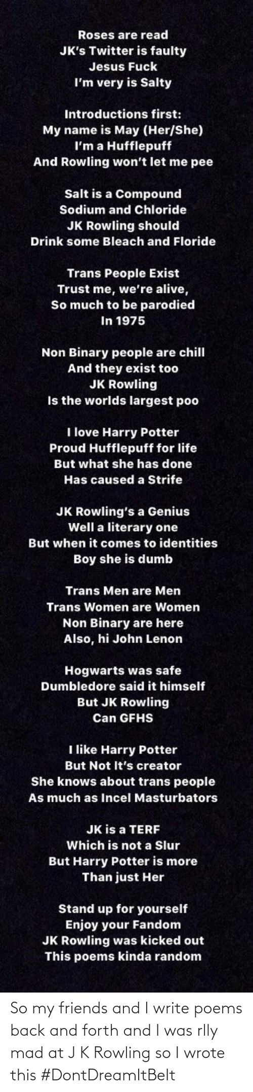 rowling: So my friends and I write poems back and forth and I was rlly mad at J K Rowling so I wrote this #DontDreamItBeIt