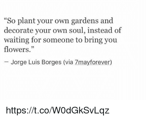 "Flowers, Girl Memes, and Waiting...: So plant your own gardens and  decorate your own soul, instead of  waiting for someone to bring you  flowers.""  Jorge Luis Borges (via 7mayforever) https://t.co/W0dGkSvLqz"