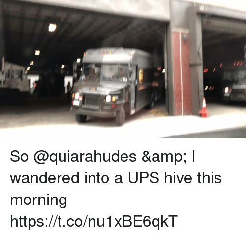 Memes, Ups, and 🤖: So @quiarahudes & I wandered into a UPS hive this morning https://t.co/nu1xBE6qkT