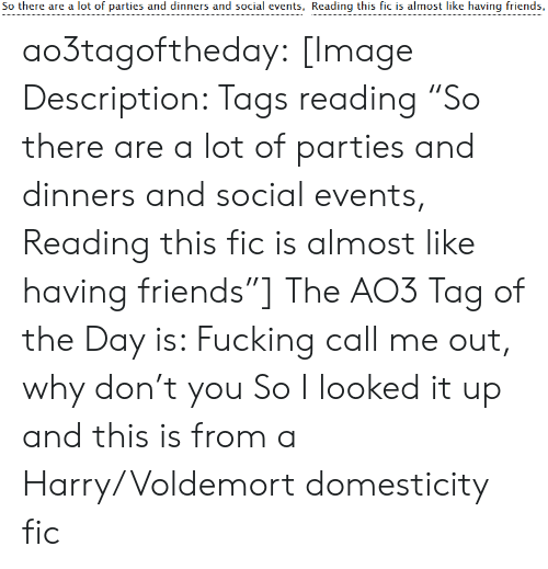 "Friends, Fucking, and Target: So there are a lot of parties and dinners and social events, Reading this fic is almost like having friends, ao3tagoftheday:  [Image Description: Tags reading ""So there are a lot of parties and dinners and social events, Reading this fic is almost like having friends""]  The AO3 Tag of the Day is: Fucking call me out, why don't you   So I looked it up and this is from a Harry/Voldemort domesticity fic"