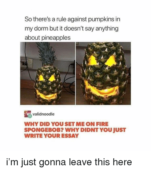 Fire, SpongeBob, and Say Anything...: So there's a rule against pumpkins in  my dorm but it doesn't say anything  about pineapples  validnoodle  WHY DID YOU SET ME ON FIRE  SPONGEBOB? WHY DIDNT YOU JUST  WRITE YOUR ESSAY i'm just gonna leave this here