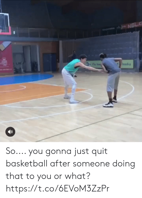 Basketball, Memes, and 🤖: So.... you gonna just quit basketball after someone doing that to you or what? https://t.co/6EVoM3ZzPr
