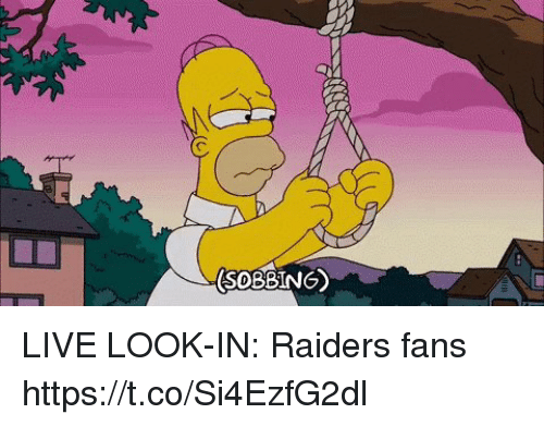 Football, Nfl, and Sports: SOBBING LIVE LOOK-IN: Raiders fans https://t.co/Si4EzfG2dl