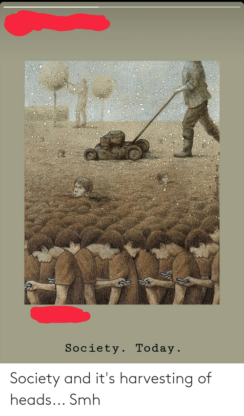 Harvesting: Society and it's harvesting of heads... Smh