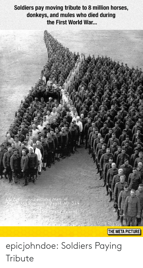 Horses: Soldiers pay moving tribute to 8 million horses,  donkeys, and mules who died during  the First World War...  THE META PICTURE epicjohndoe:  Soldiers Paying Tribute