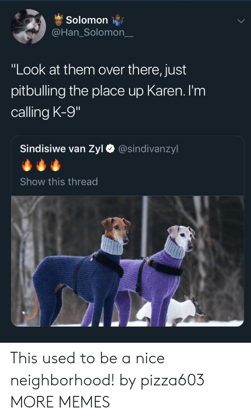 """Dank, Memes, and Target: Solomon  @Han_Solomon_  """"Look at them over there, just  pitbulling the place up Karen. I'm  calling K-9  Sindisiwe van Zyl  @sindivanzyl  Show this thread This used to be a nice neighborhood! by pizza603 MORE MEMES"""