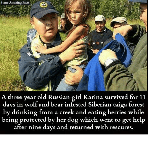 Drinking, Facts, and Memes: Some Amazing Facts  A three year old Russian girl Karina survived for 11  days in wolf and bear infested Siberian taiga forest  by drinking from a creek and eating berries while  being protected by her dog which went to get help  after nine days and returned with rescures.