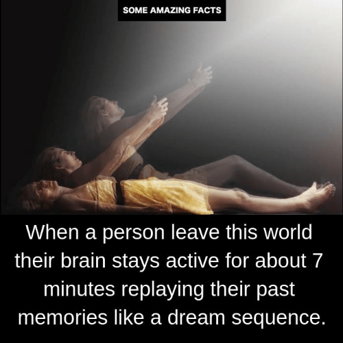 A Dream, Facts, and Memes: SOME AMAZING FACTS  When a person leave this world  their brain stays active for about 7  minutes replaying their past  memories like a dream sequence.