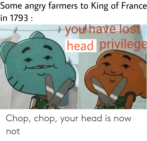 Angry: Some angry farmers to King of France  in 1793 :  +you'have lost  head privilege  w/erd Chop, chop, your head is now not