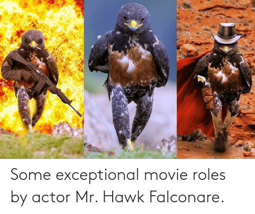 exceptional: Some exceptional movie roles by actor Mr. Hawk Falconare.