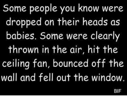 Bounc: Some people you know were  dropped on their heads as  babies. Some were clearly  thrown in the air, hit the  ceiling fan, bounced off the  wall and fell out the window.  BIF