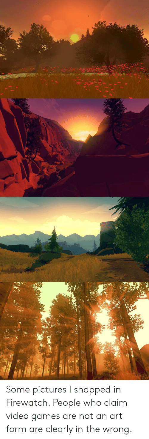 Video Games, Games, and Pictures: Some pictures I snapped in Firewatch. People who claim video games are not an art form are clearly in the wrong.