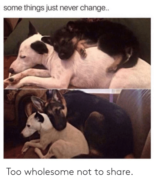 Wholesome, Change, and Never: some things just never change.. Too wholesome not to share.