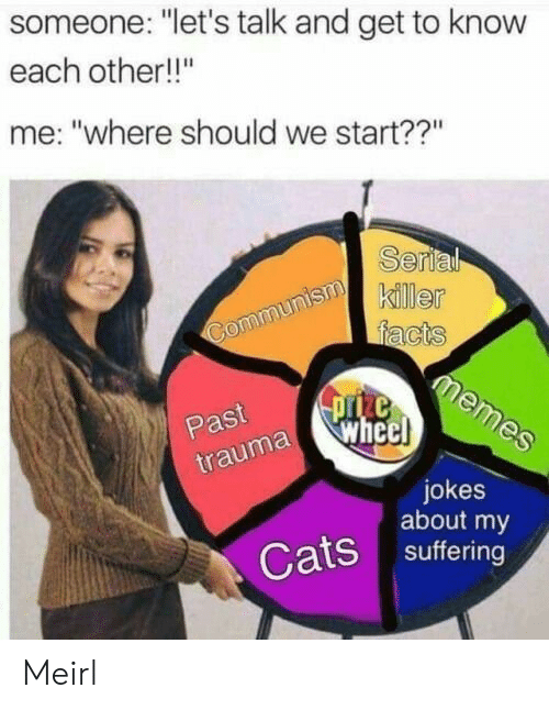 """Lets Talk: someone: """"let's talk and get to know  each other!!""""  me: """"where should we start??""""  Serl  killer  Past  uma whe  jokes  about my  Cats suffering Meirl"""