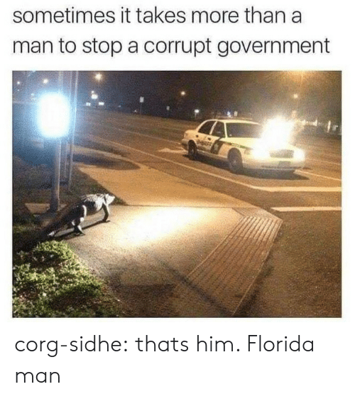 Corg: sometimes it takes more than a  man to stop a corrupt government corg-sidhe: thats him. Florida man
