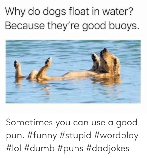stupid: Sometimes you can use a good pun. #funny #stupid #wordplay #lol #dumb #puns #dadjokes