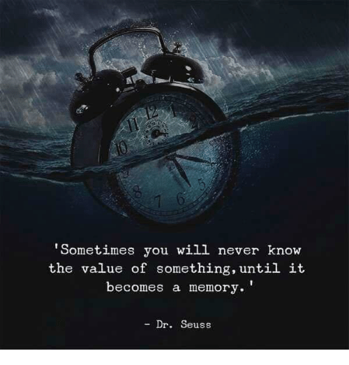 Dr. Seuss, Never, and Memory: 'Sometimes you will never know  the value of something, until it  becomes a memory.'  - Dr. Seuss
