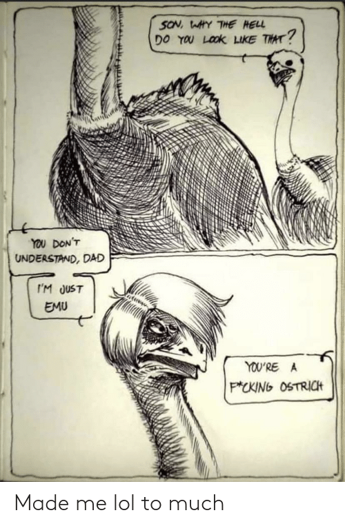 a&p: SON, WAHY THE HELL  DO YOU LOOK LIKE THAT?  YOU DON'T  UNDERSTAND, DAD  I'M JUST  EMU  YOU'RE A  P*CKING OSTRICH Made me lol to much
