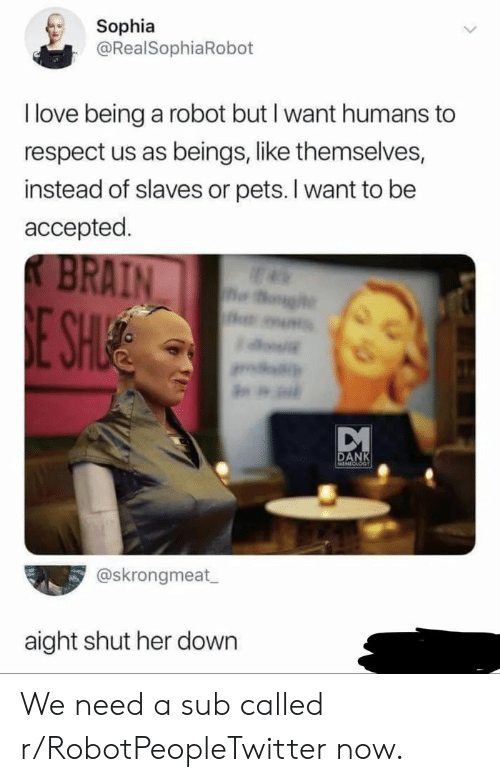 slaves: Sophia  @RealSophiaRobot  I love being a robot but I want humans to  respect us as beings, like themselves,  instead of slaves or pets. I want to be  accepted.  BRAIN  og  E SHIE  w  DANK  MEMECLOGT  @skrongmeat  aight shut her down We need a sub called r/RobotPeopleTwitter now.