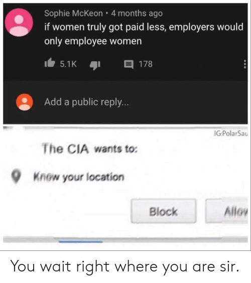 Âllo: Sophie McKeon 4 months ago  if women truly got paid less, employers would  only employee women  目 178  5.1K  Add a public reply...  IG:PolarSau  The CIA wants to:  Know your location  Allo  Block You wait right where you are sir.