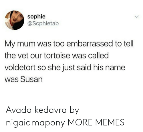 Dank, Memes, and Target: sophie  @Scphietab  My mum was too embarrassed to tell  the vet our tortoise was called  voldetort so she just said his name  was Susan Avada kedavra by nigaiamapony MORE MEMES