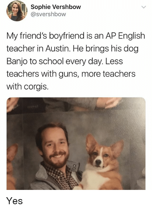 Corgis: Sophie Vershbow  @svershbow  My friend's boyfriend is an AP English  teacher in Austin. He brings his dog  Banjo to school every day. Less  teachers with guns, more teachers  with corgis. Yes