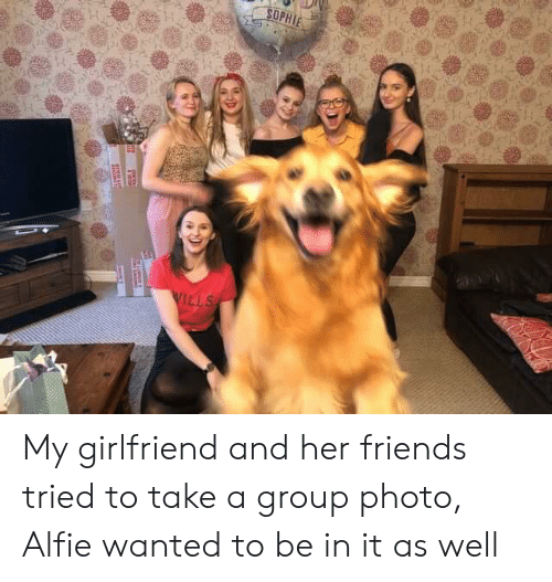 sophie: SOPHIE  WILLS  ae My girlfriend and her friends tried to take a group photo, Alfie wanted to be in it as well