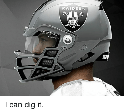Memes, Raiders, and 🤖: SOR-or  roo  RAIDERS I can dig it.