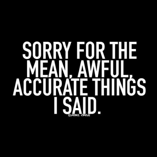 Sorry, Mean, and For: SORRY FOR THE  MEAN, AWFUL  ACCURATE THINGS  I SAID  RESEL GRCUS