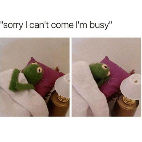"im busy: ""sorry I can't come I'm busy"""