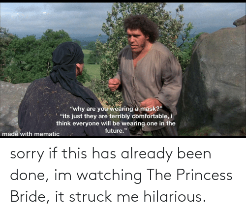 Princess: sorry if this has already been done, im watching The Princess Bride, it struck me hilarious.