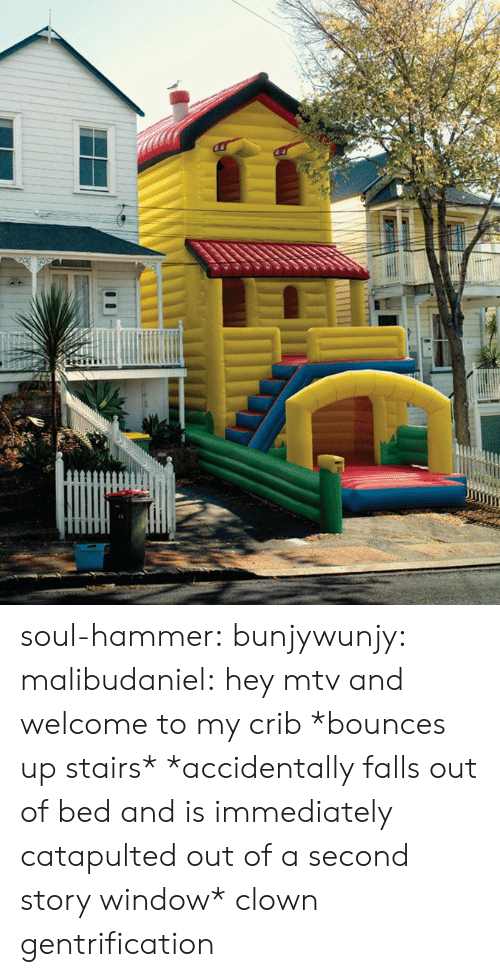 Mtv, Tumblr, and Blog: soul-hammer: bunjywunjy:  malibudaniel:  hey mtv and welcome to my crib *bounces up stairs*   *accidentally falls out of bed and is immediately catapulted out of a second story window*   clown gentrification