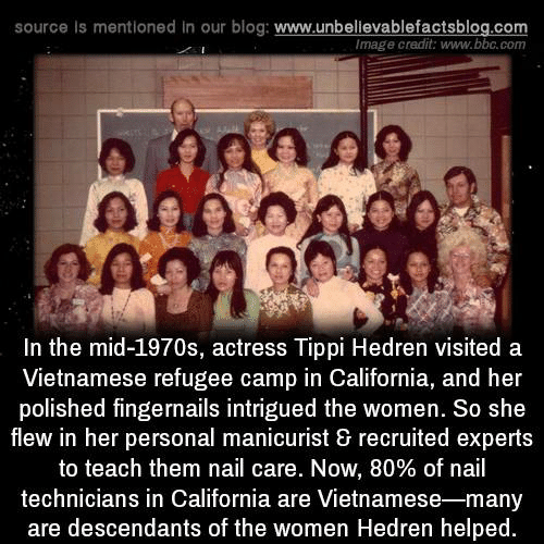 Memes, Blog, and California: source Is mentioned in our blog: www.unbellevablefactsblog.co  Image credit: www.bbc.com  a so  In the mid-1970s, actress Tippi Hedren visited a  Vietnamese refugee camp in California, and her  polished fingernails intrigued the women. So she  flew in her personal manicurist & recruited experts  to teach them nail care. Now, 80% of nail  technicians in California are Vietnamese-many  are descendants of the women Hedren helped.