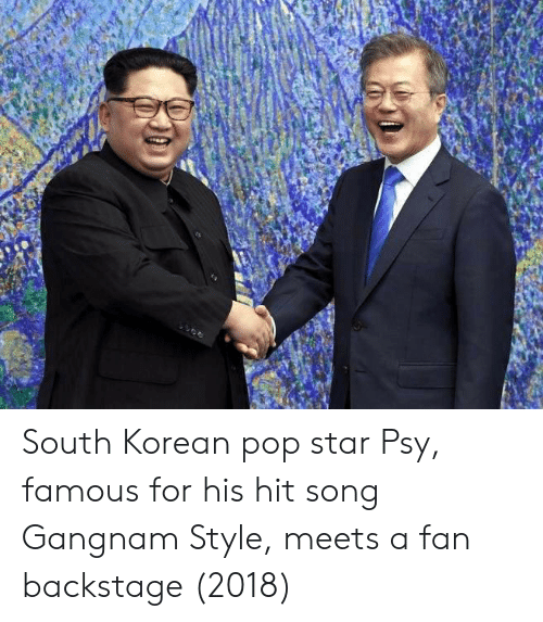 psy: South Korean pop star Psy, famous for his hit song Gangnam Style, meets a fan backstage (2018)