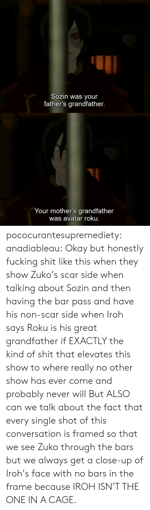No Other: Sozin was your  father's grandfather.   Your mother's grandfather  was avatar roku. pococurantesupremediety: anadiableau: Okay but honestly fucking shit like this when they show Zuko's scar side when talking about Sozin and then having the bar pass and have his non-scar side when Iroh says Roku is his great grandfather if EXACTLY the kind of shit that elevates this show to where really no other show has ever come and probably never will But ALSO can we talk about the fact that every single shot of this conversation is framed so that we see Zuko through the bars but we always get a close-up of Iroh's face with no bars in the frame because IROH ISN'T THE ONE IN A CAGE.
