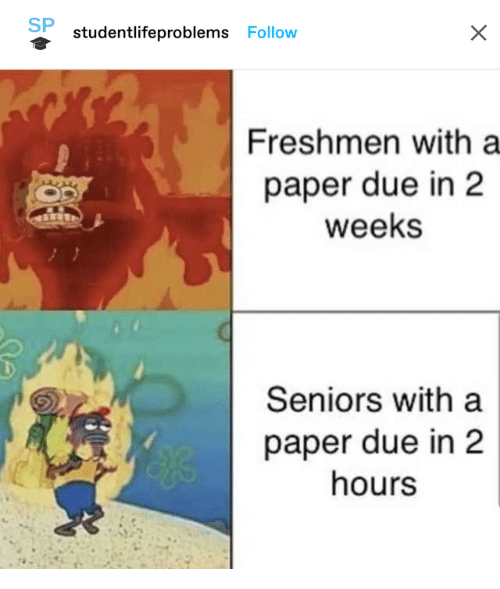 seniors: SP  studentlifeproblems Follow  Freshmen with a  paper due in 2  weeks  Seniors with a  paper due in 2  hours