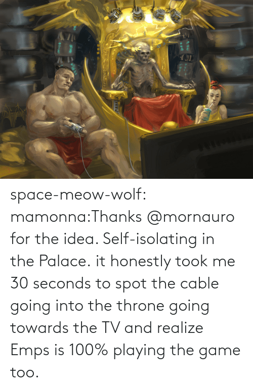 realize: space-meow-wolf:  mamonna:Thanks @mornauro for the idea. Self-isolating in the Palace. it honestly took me 30 seconds to spot the cable going into the throne going towards the TV and realize Emps is 100% playing the game too.