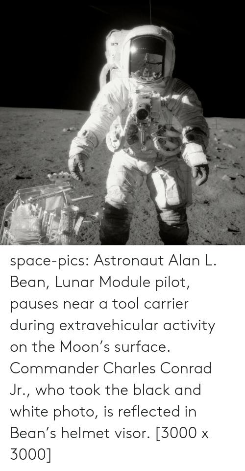 Tumblr, Black, and Black and White: space-pics:  Astronaut Alan L. Bean, Lunar Module pilot, pauses near a tool carrier during extravehicular activity on the Moon's surface. Commander Charles Conrad Jr., who took the black and white photo, is reflected in Bean's helmet visor. [3000 x 3000]
