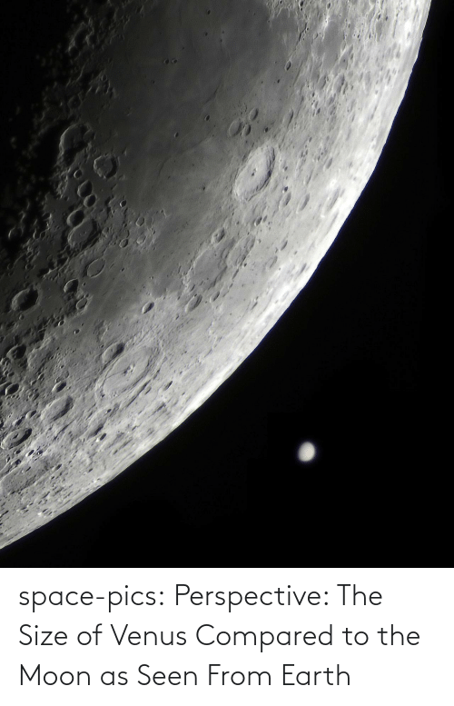 pics: space-pics:  Perspective: The Size of Venus Compared to the Moon as Seen From Earth