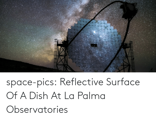 Dish: space-pics:  Reflective Surface Of A Dish At La Palma Observatories