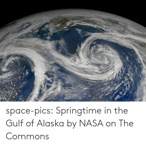 Alaska: space-pics:  Springtime in the Gulf of Alaska by NASA on The Commons