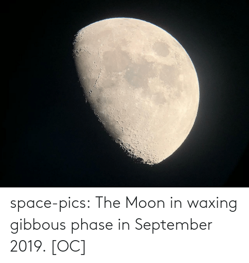 pics: space-pics:  The Moon in waxing gibbous phase in September 2019. [OC]