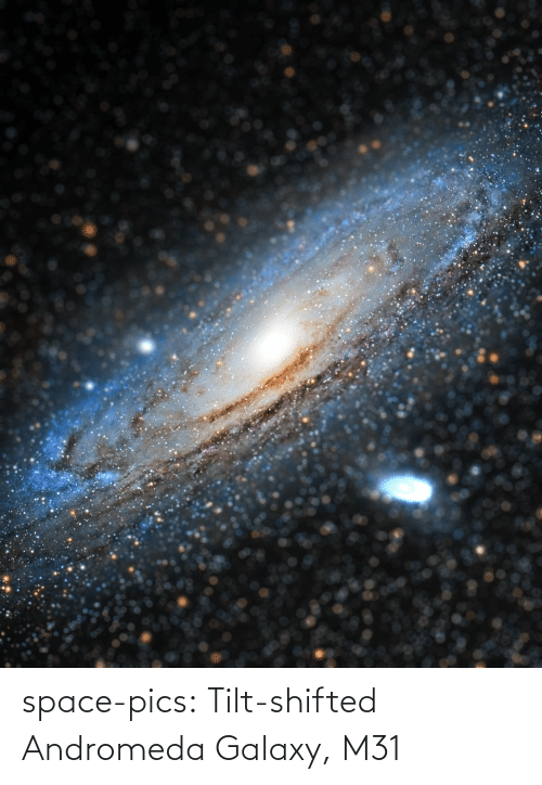 Space: space-pics:  Tilt-shifted Andromeda Galaxy, M31