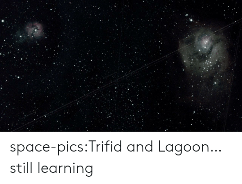 Tumblr, Blog, and Space: space-pics:Trifid and Lagoon… still learning