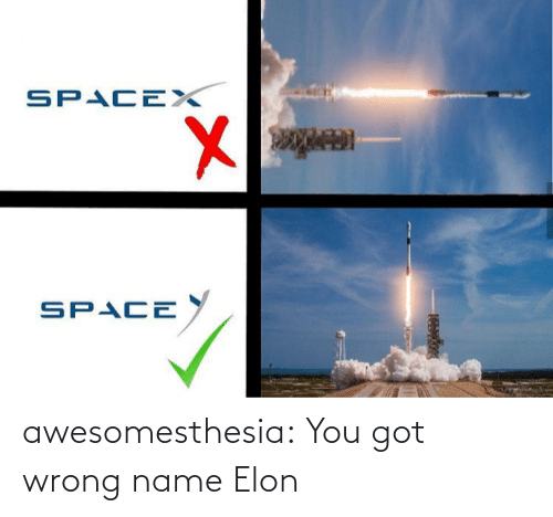 wrong: SPACEX  SPACE  అ awesomesthesia:  You got wrong name Elon