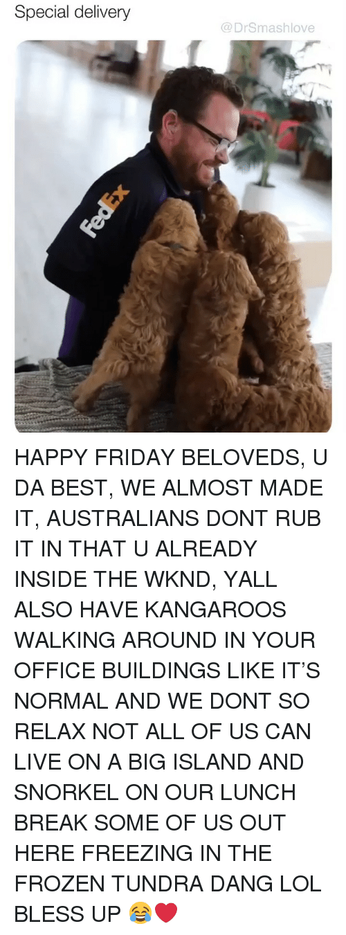 kangaroos: Special delivery  @DrSmashlove HAPPY FRIDAY BELOVEDS, U DA BEST, WE ALMOST MADE IT, AUSTRALIANS DONT RUB IT IN THAT U ALREADY INSIDE THE WKND, YALL ALSO HAVE KANGAROOS WALKING AROUND IN YOUR OFFICE BUILDINGS LIKE IT'S NORMAL AND WE DONT SO RELAX NOT ALL OF US CAN LIVE ON A BIG ISLAND AND SNORKEL ON OUR LUNCH BREAK SOME OF US OUT HERE FREEZING IN THE FROZEN TUNDRA DANG LOL BLESS UP 😂❤️
