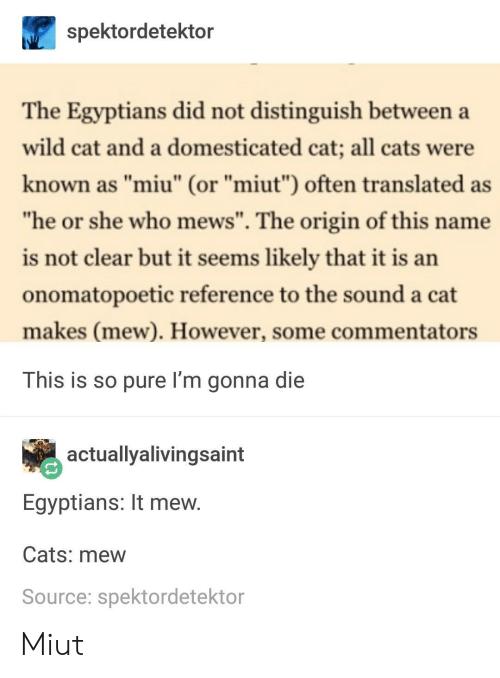 """The Origin Of: spektordetektor  The Egyptians did not distinguish between a  wild cat and a domesticated cat; all cats were  known as """"miu"""" (or """"miut"""") often translated as  he or she who mews"""". The origin of this name  is not clear but it seems likely that it is an  onomatopoetic reference to the sound a cat  makes (mew). However, some commentators  This is so pure I'm gonna die  actuallyalivingsaint  Egyptians: It mew  Cats: mew  Source: spektordetektor Miut"""