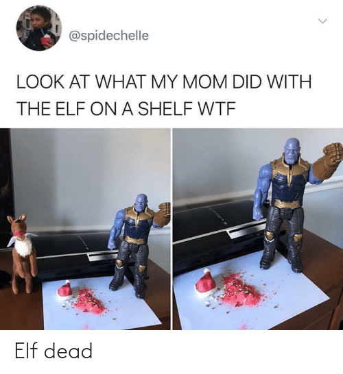 WTF: @spidechelle  LOOK AT WHAT MY MOM DID WITH  THE ELF ON A SHELF WTF Elf dead